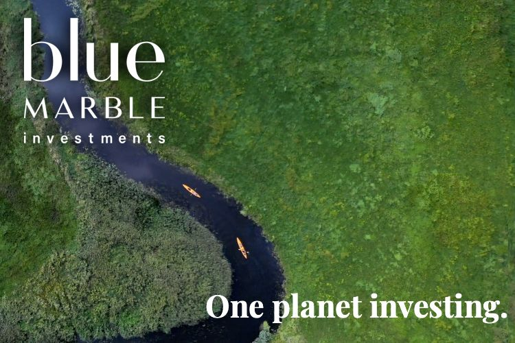 Sustainable Investing Firm Blue Marble Celebrates 20th Anniversary-GreenMoney