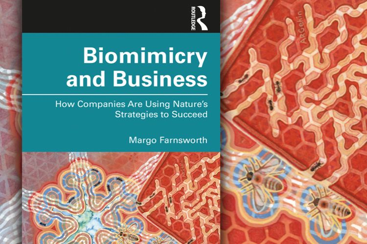 Biomimicry and Business-How Companies are Using Natures Strategies-by Margo Farnsworth