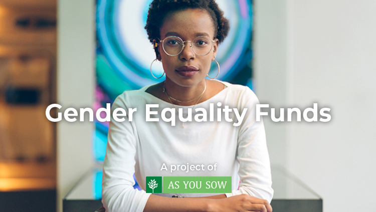 New Gender Lens Investing Tool Helps Drive Capital to Mutual Funds Supporting Gender Equality