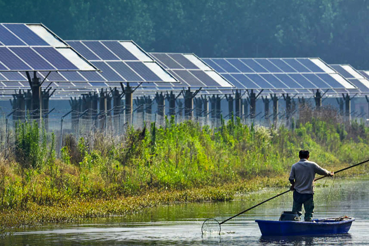 Domini-Thornburg-BostonCommon-Int SRI Funds