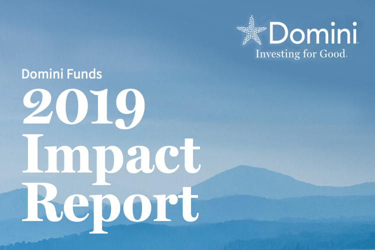 Domini Impact releases Domini Funds 2019 Impact Report-GreenMoney