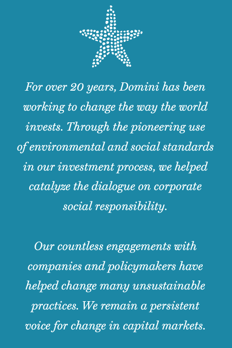 For over 20 years Domini has been working to change the way the world invests