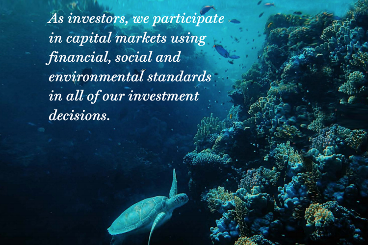 SRI-Investing-a-Global-Perspective-by-Amy-Domini-GreenMoney-Oct.20