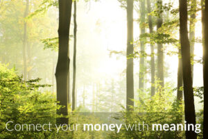 The Connection Between Investing and Our Values-by Rachel McDonough-Ameriprise
