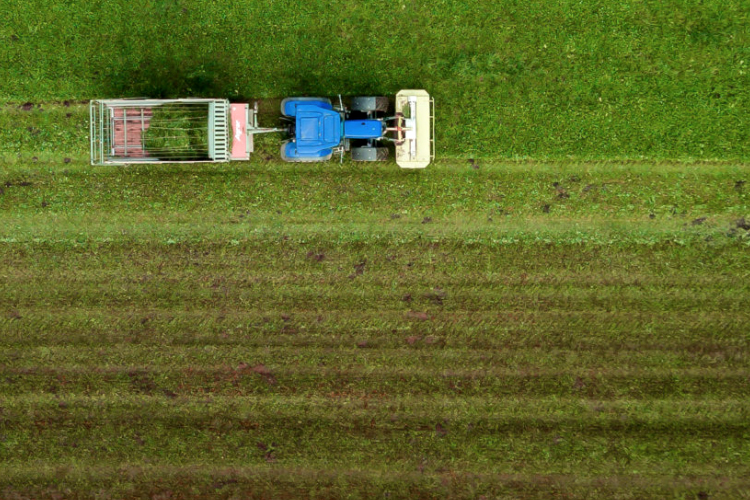 Can We Pay Farmers to Store Carbon Emissions - by Marcello Rossi-CCM