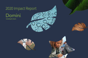 Domini 2020 Impact Report-GreenMoney