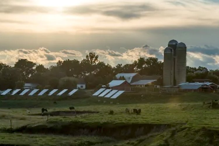 Organic Valley Launches Clean Energy Fund for its Farmers-GreenMoney-June 2021