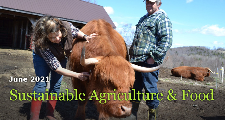 Sustainable Agriculture and Food-June 2021