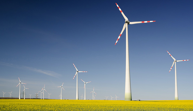 Windfarm pic courtesy of Climate Safe Network